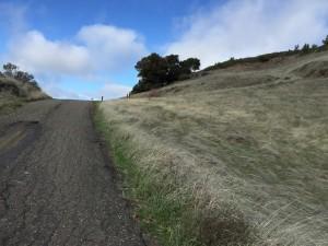 End Paved Bald Mountain